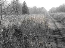 Railway Trail - Grey County