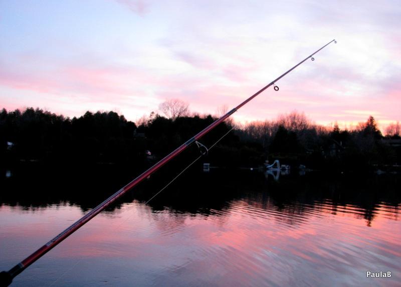 Lots of fishing at sunset.