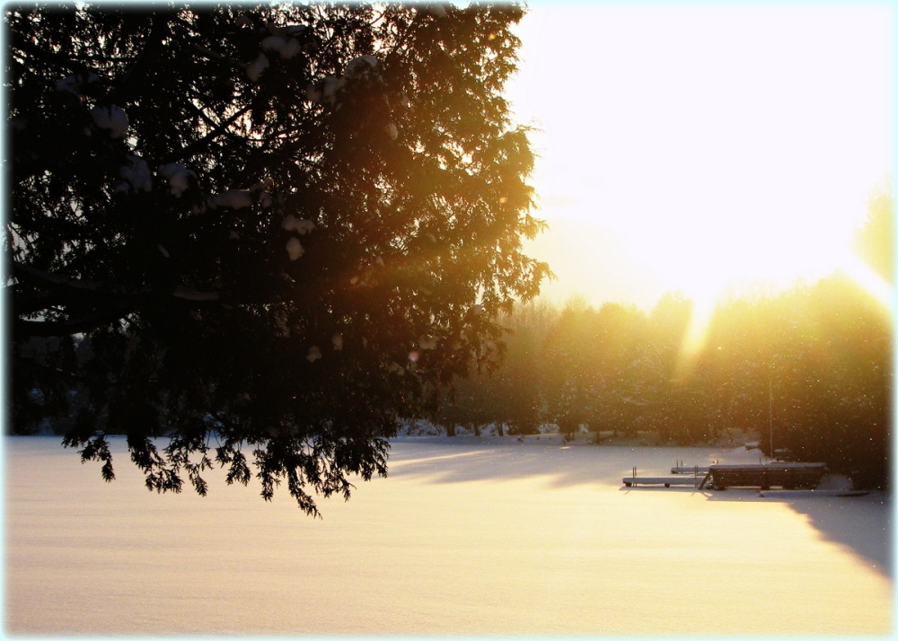Sunshine on snowflakes