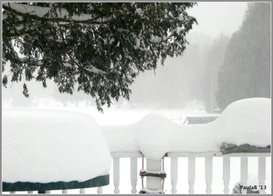 Snowy Morn