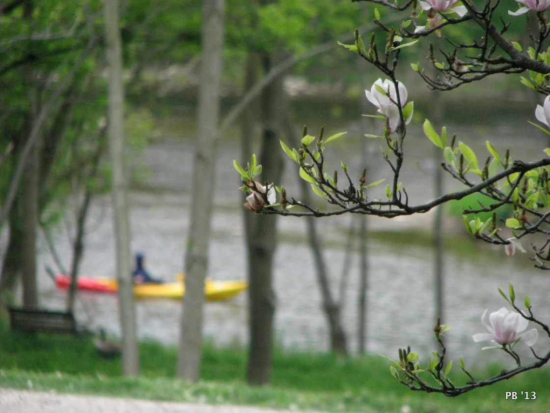 Canoe On The Thames