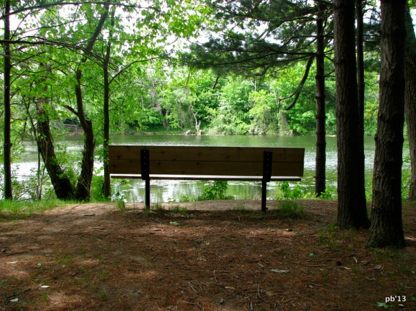 Bench by a pond