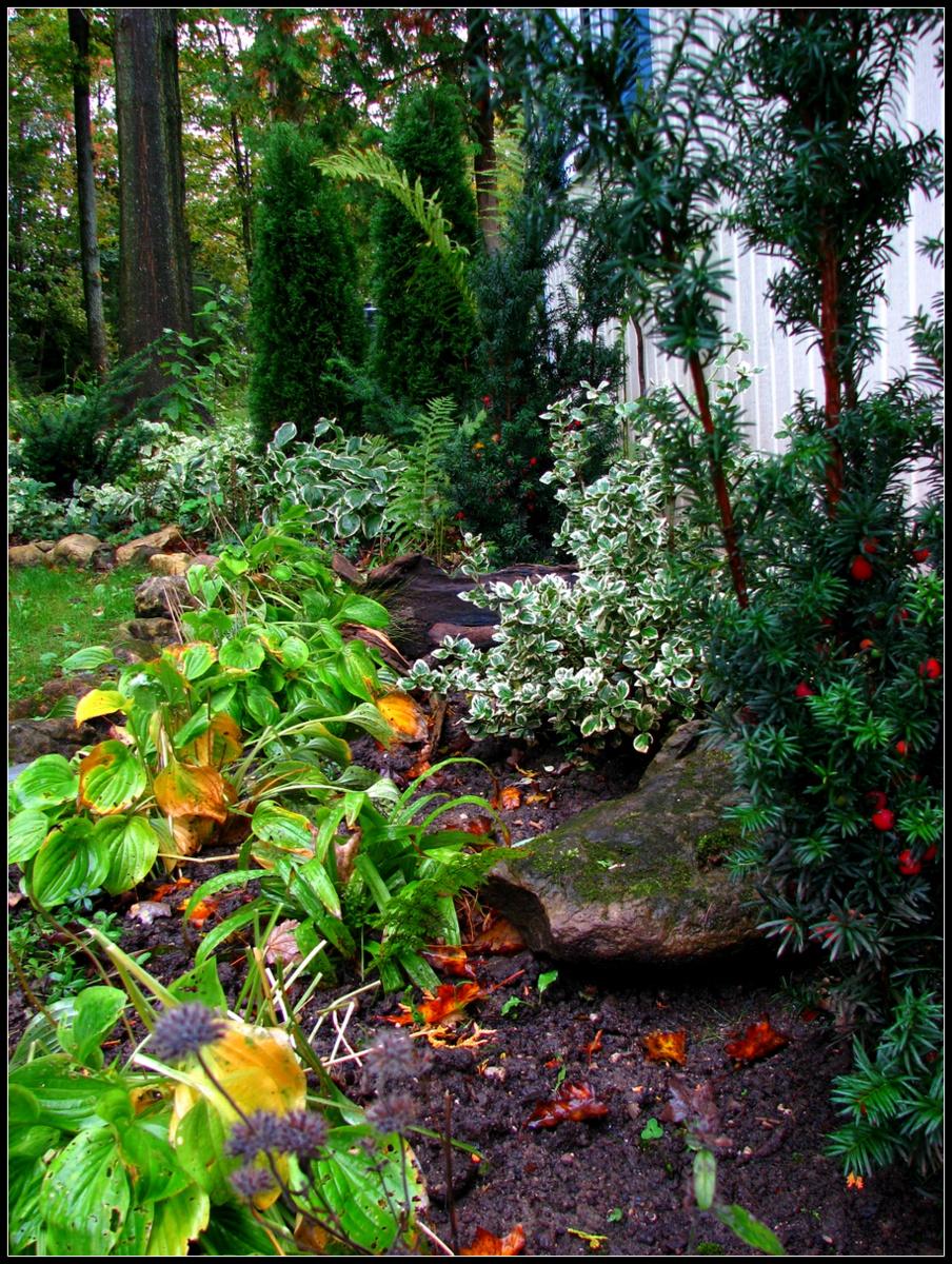 Irish Lake Garden