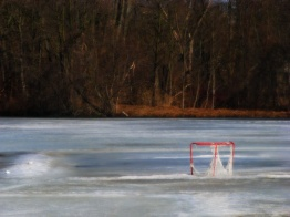 A NET ON THE ICE