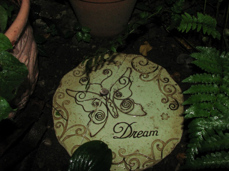 Dreams in the Garden