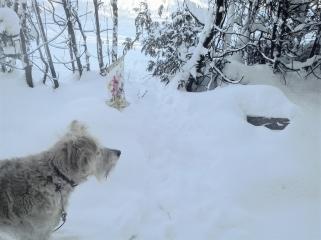 winter-scene-3