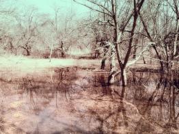 coves-april-b