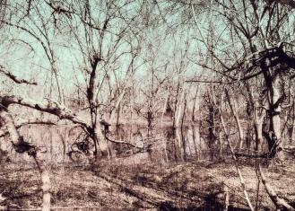 coves-april-c