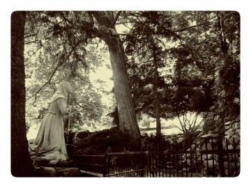girl and oak tree