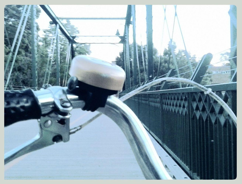 the bridge towards home