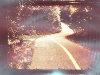 path-5