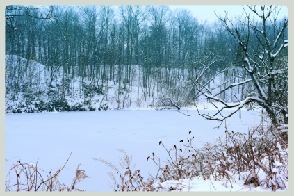 icy-pond