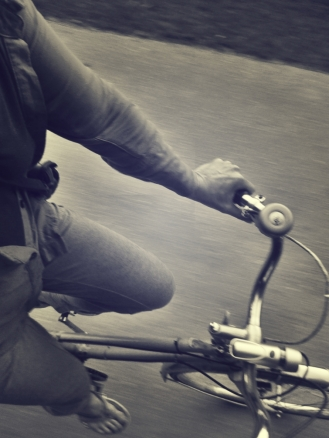 riding-with-rose