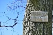 freeman park