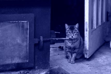 sofie at the door