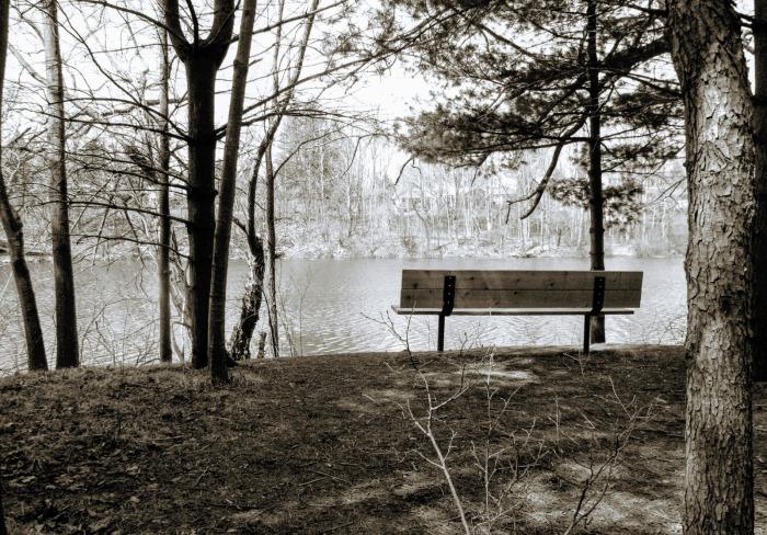 bench of boredom - thetemenosjournal.com
