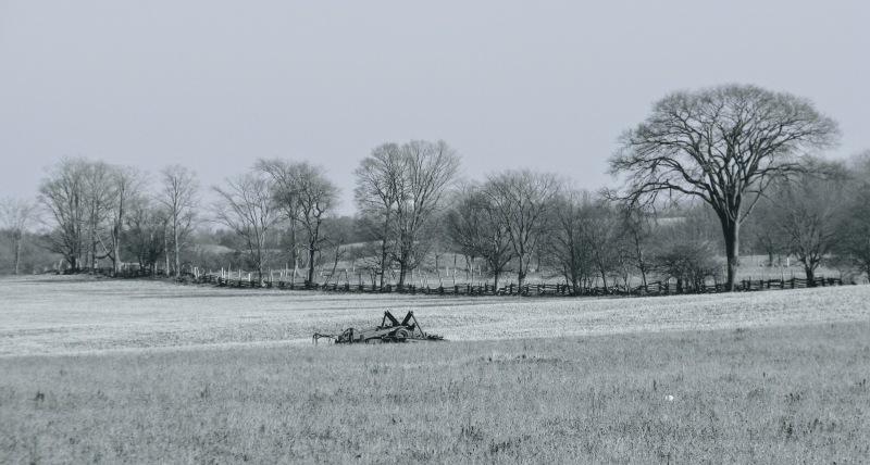 a field in Grey County, Ontario, Canada - thetemenosjournal.com