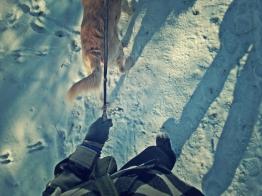 walking on snowy pathways