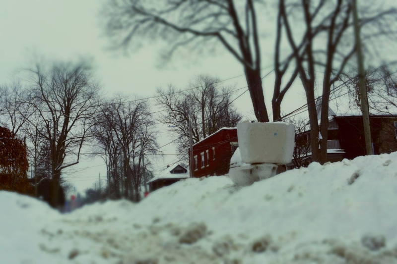 Toilet In A Snowbank - thetemenosjournal.com