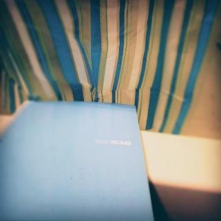blue notebook and shower curtain - thetemenosjournal.com