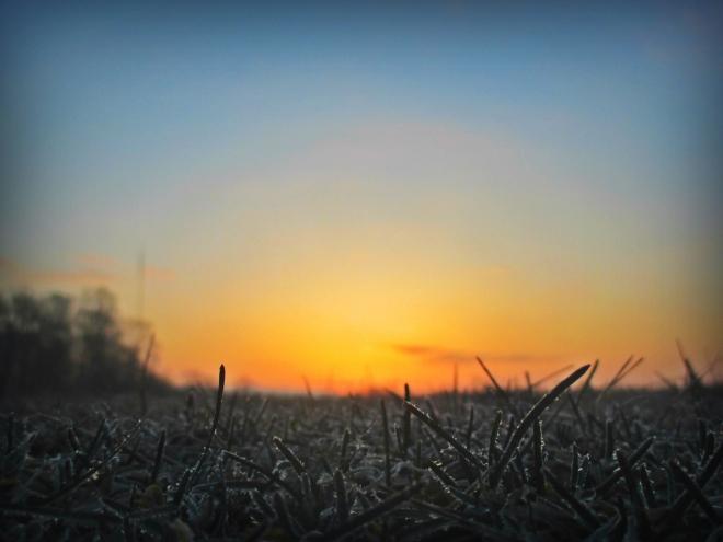 the dawn - thetemenosjournal.com