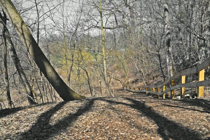 golden path to coves - thetemenosjournal.com