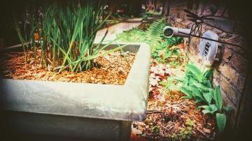 spring garden 2018 - May - thetemenosjournal.com