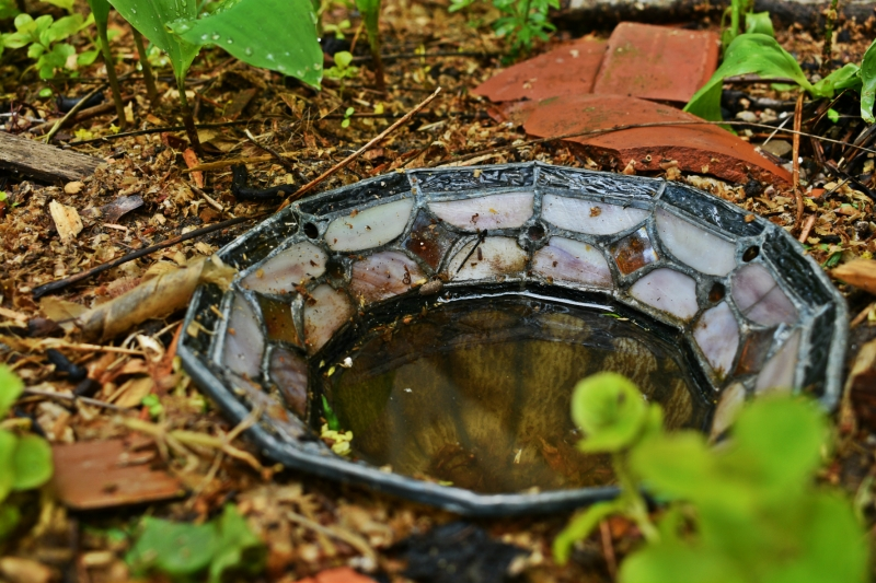 Tiffany style lamp shade bird bath - thetemenosjournal.com