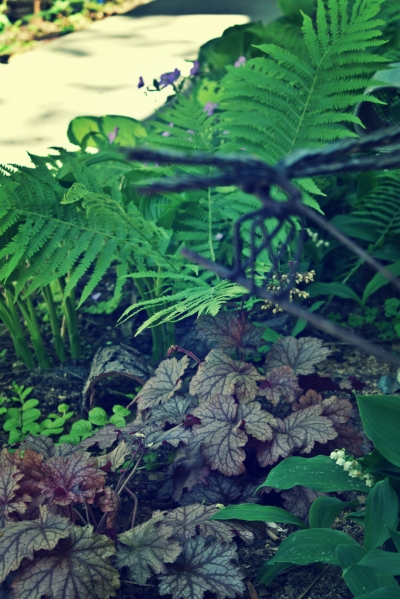 woodland-garden-may-2018