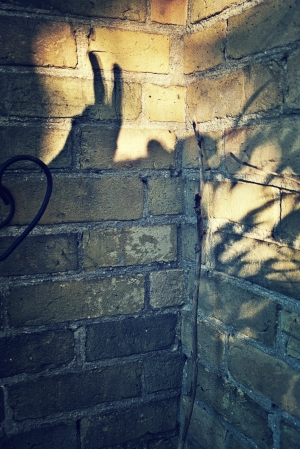 bunny ears on the brick wall - thetemenosjournal.com