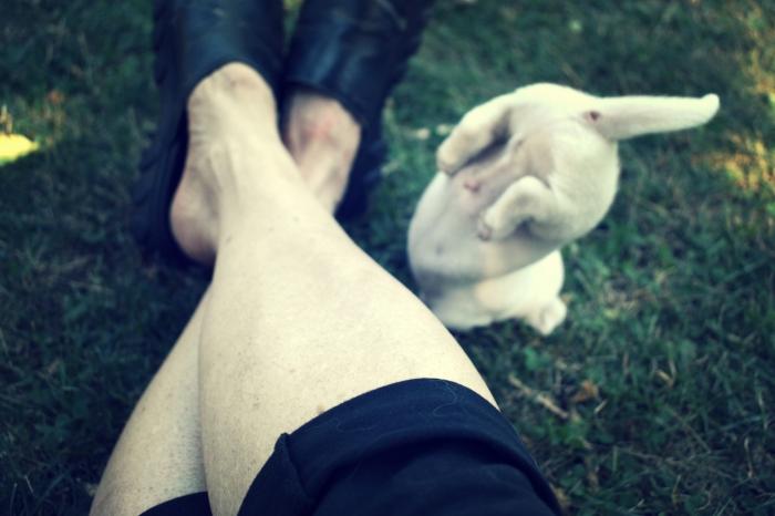 puppy bum - thetemenosjournal.com