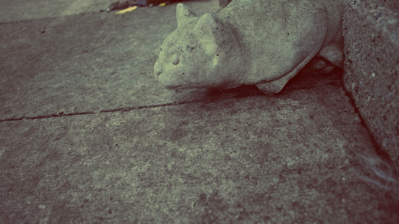 a cement cat on concrete - thetemenosjournal.com