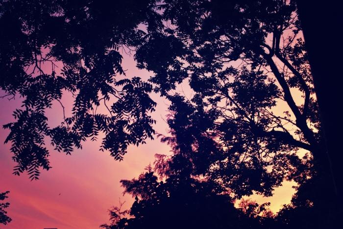 red sky in the morning - thetemenosjournal.com