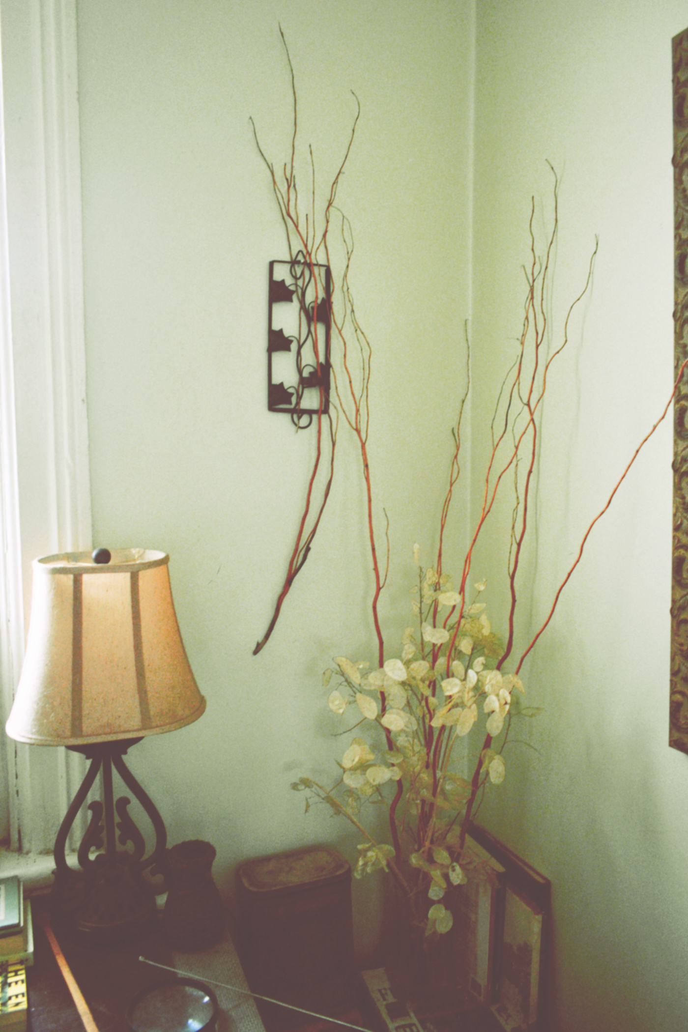moneywort and sticks decor - thetemenosjournal.com