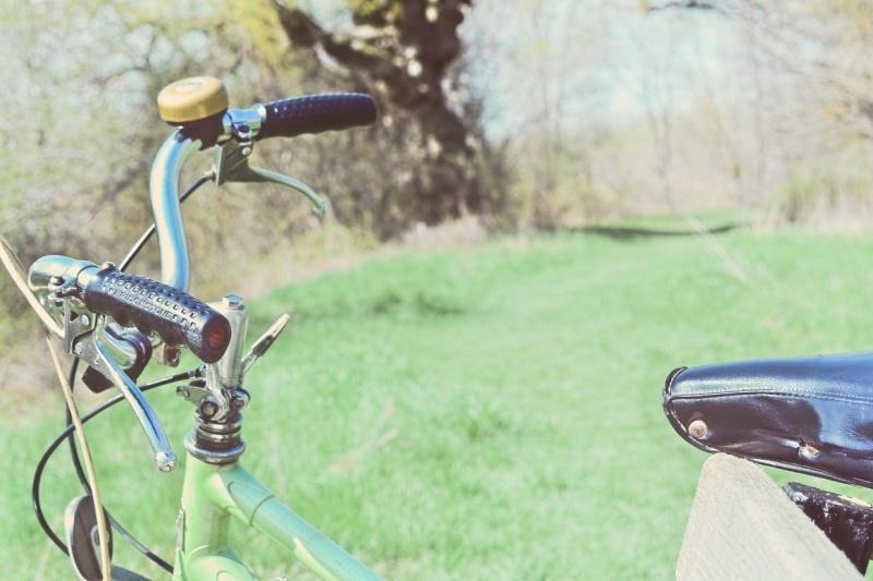Vintage Bike at Park - thetemenosjournal.com