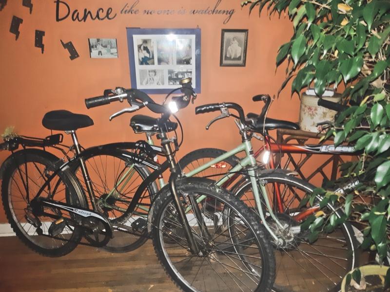 trio of bikes - thetemenosjournal.com