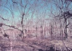 coves-april-13