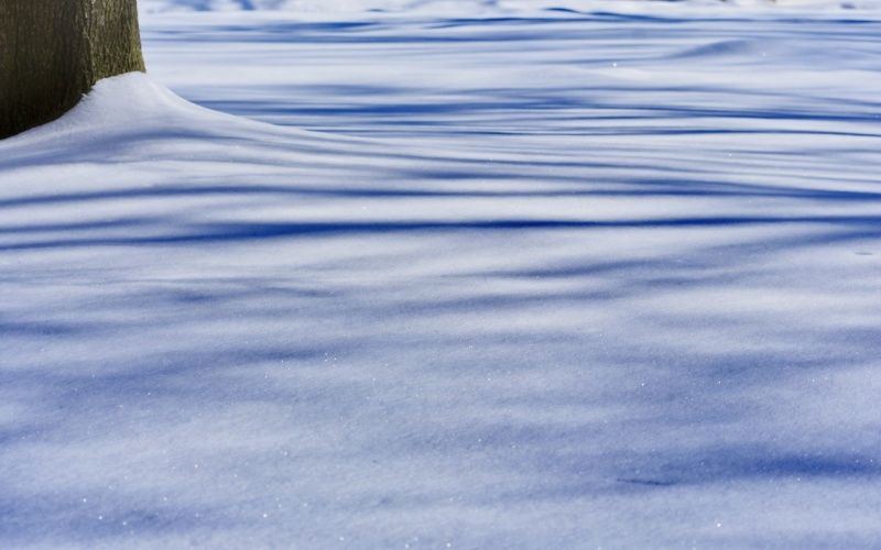 glistening shadows on the snow - london, ontario, canada - thetemenosjournal.com