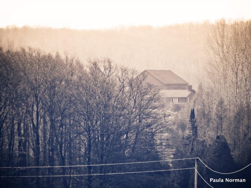 house in the woods - grey county, ontario, canada - thetemenosjournal.com