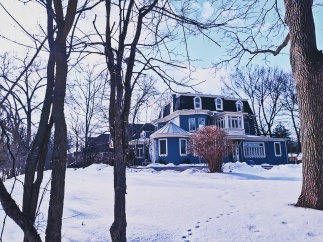 the blue house on ridout - 1