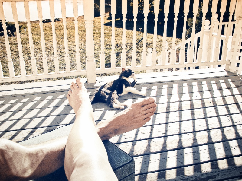 us at the lake with gizmo that my old cat - thetemenosjournal.ccom