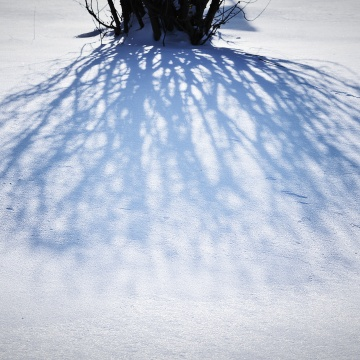 shadow on icy snow - thetemenosjournal.com