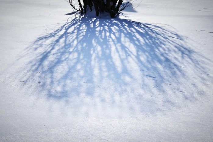 shadow on icy snow - thetemenosjournal.com