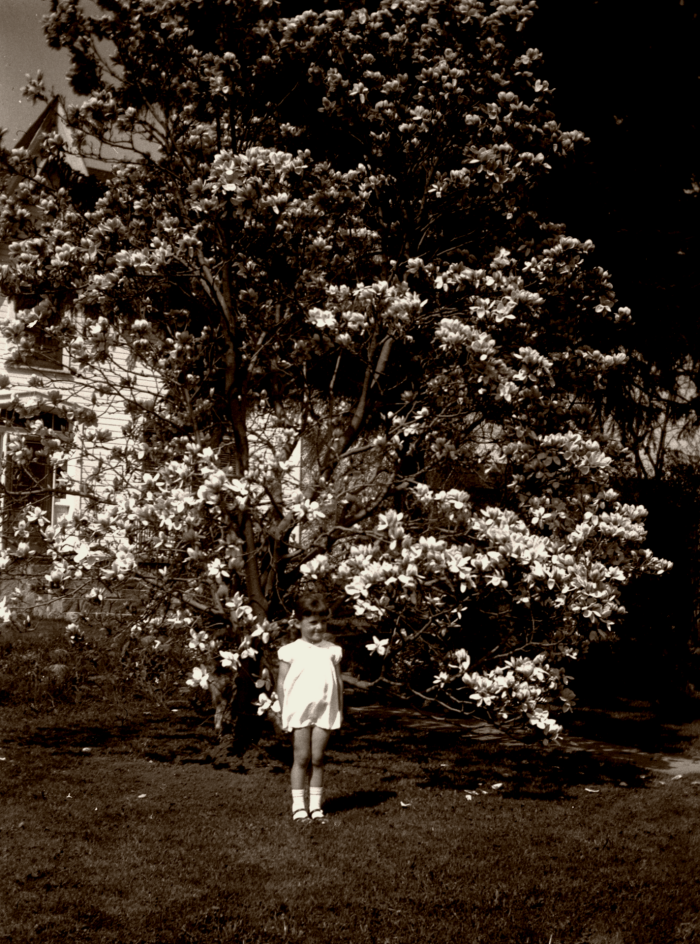 young girl in front of saucer Magnolia Tree